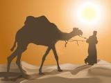 La Ley del Desierto: entendiendo mejor el AntiguoTestamento