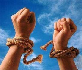 la verdad os hará libres
