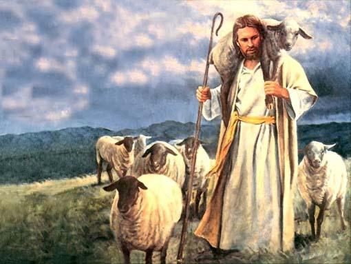 Resultado de imagen de que hay sólo un pastor y un rebaño.